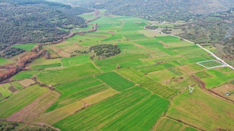 Tarımsal Üretimde Kümelenme Modeli Projesi Hayata Geçiriliyor
