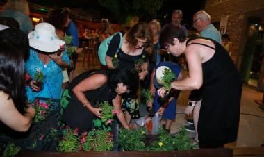 En Güzel Bahçe, Balkon - Teras Yarışması Sonuçlandı